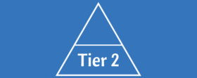 Tier 2 individual membership