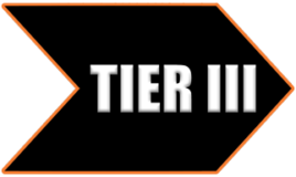 Tier 3 individual membership